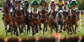 The Best Horse Racing Tipsters For Cheltenham Festival 2020